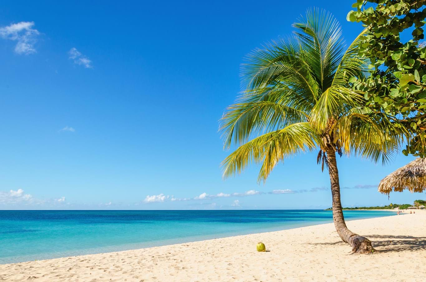 Read more about the article The Caribbean
